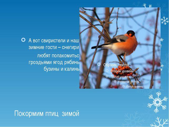 Покормим птиц зимой А вот свиристели и наши зимние гости – снегири, любят пол...