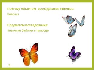 Поэтому объектом исследования явились: Бабочки Предметом исследования: Значен