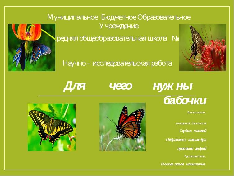 Для чего нужны бабочки Выполнили: учащиеся За класса Сердюк матвей Небратенко...
