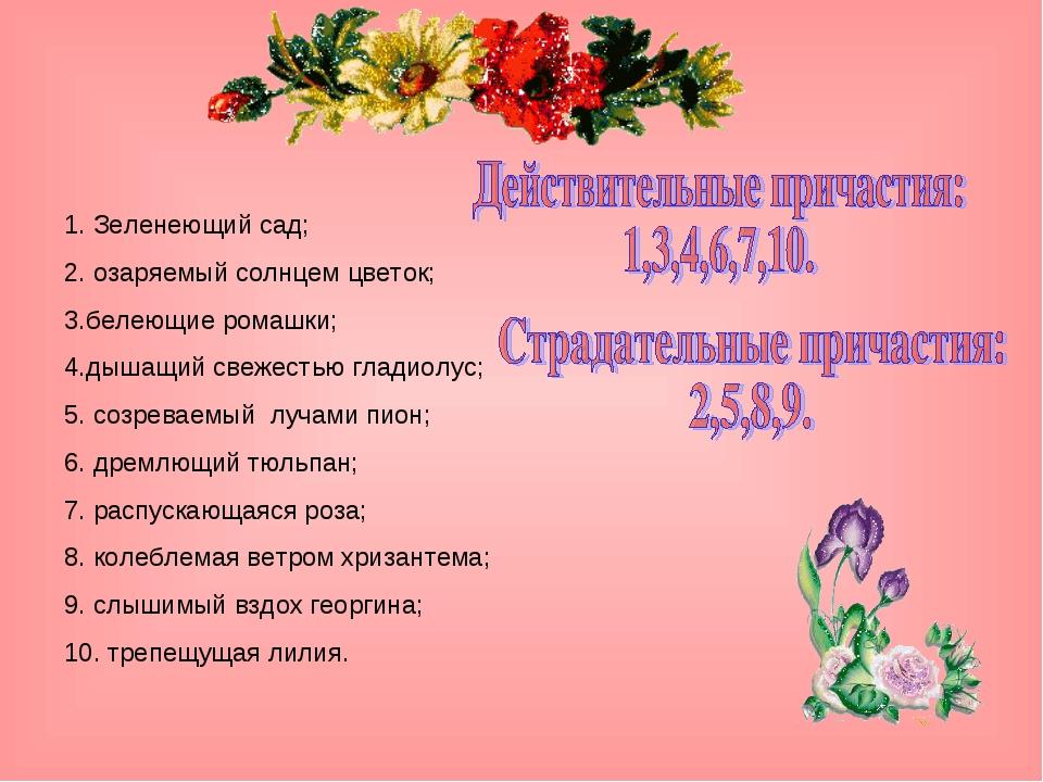 1. Зеленеющий сад; 2. озаряемый солнцем цветок; 3.белеющие ромашки; 4.дышащий...