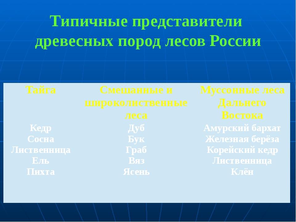 Типичные представители древесных пород лесов России Тайга Смешанные и широкол...