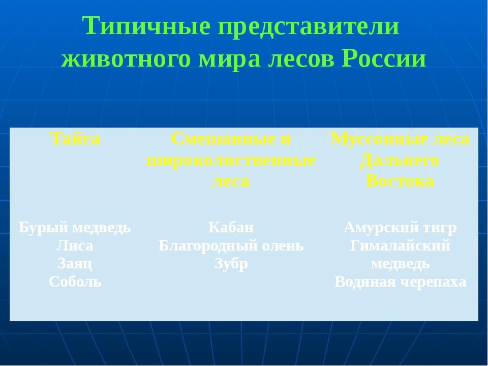Типичные представители животного мира лесов России Тайга Смешанные и широколи...
