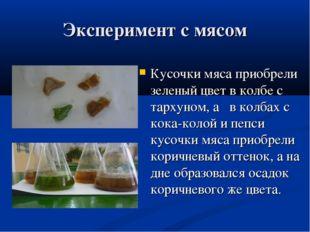 Эксперимент с мясом Кусочки мяса приобрели зеленый цвет в колбе с тархуном, а