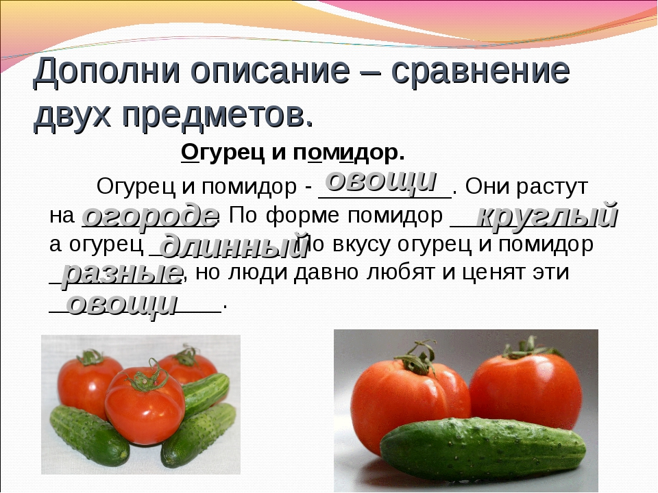 Дополни описание – сравнение двух предметов. Огурец и помидор. Огурец и пом...