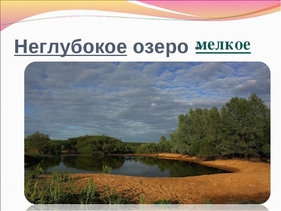 Неглубокое озеро - мелкое