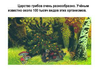 Царство грибов очень разнообразно. Учёным известно около 100 тысяч видов эти
