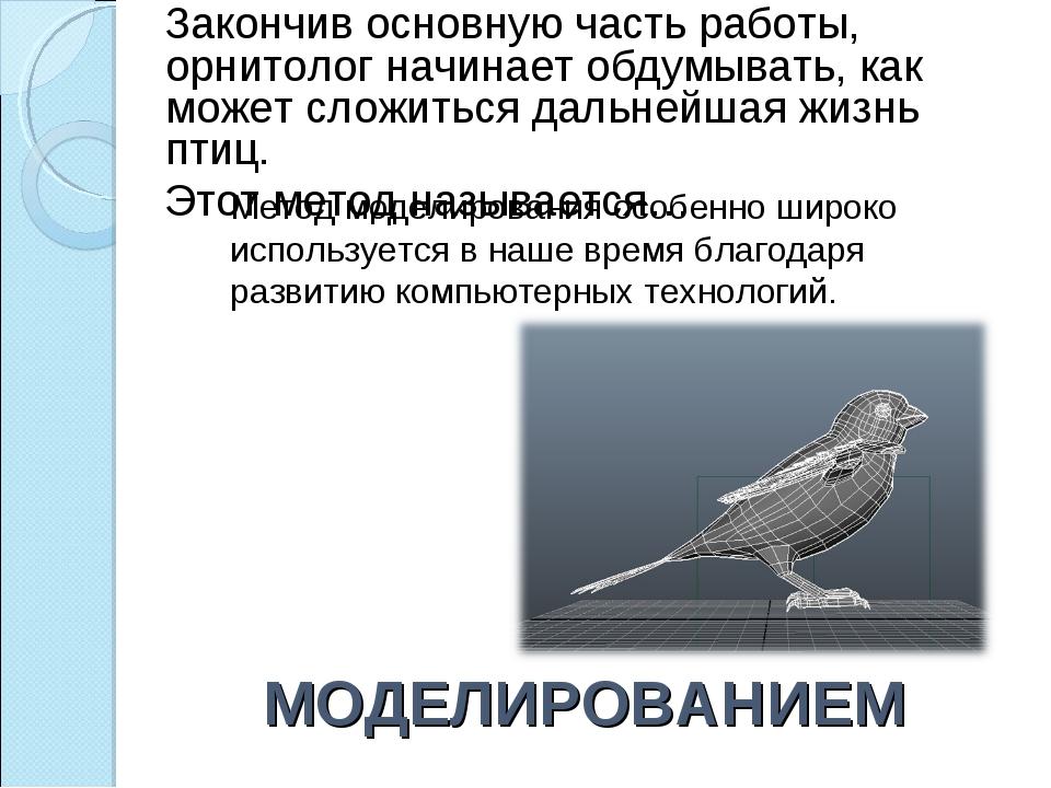 МОДЕЛИРОВАНИЕМ Закончив основную часть работы, орнитолог начинает обдумывать,...