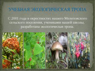 С 2001 года в окрестностях нашего Мелегежского сельского поселения, учениками