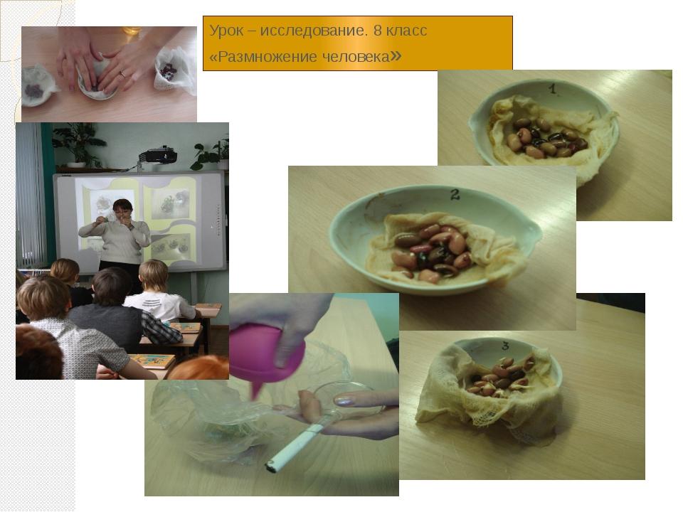 Урок – исследование. 8 класс «Размножение человека»