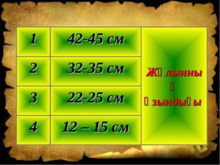 12 – 15 см 4 22-25 см 3 32-35 см 2 Жұлынның ұзындығы 42-45 см 1