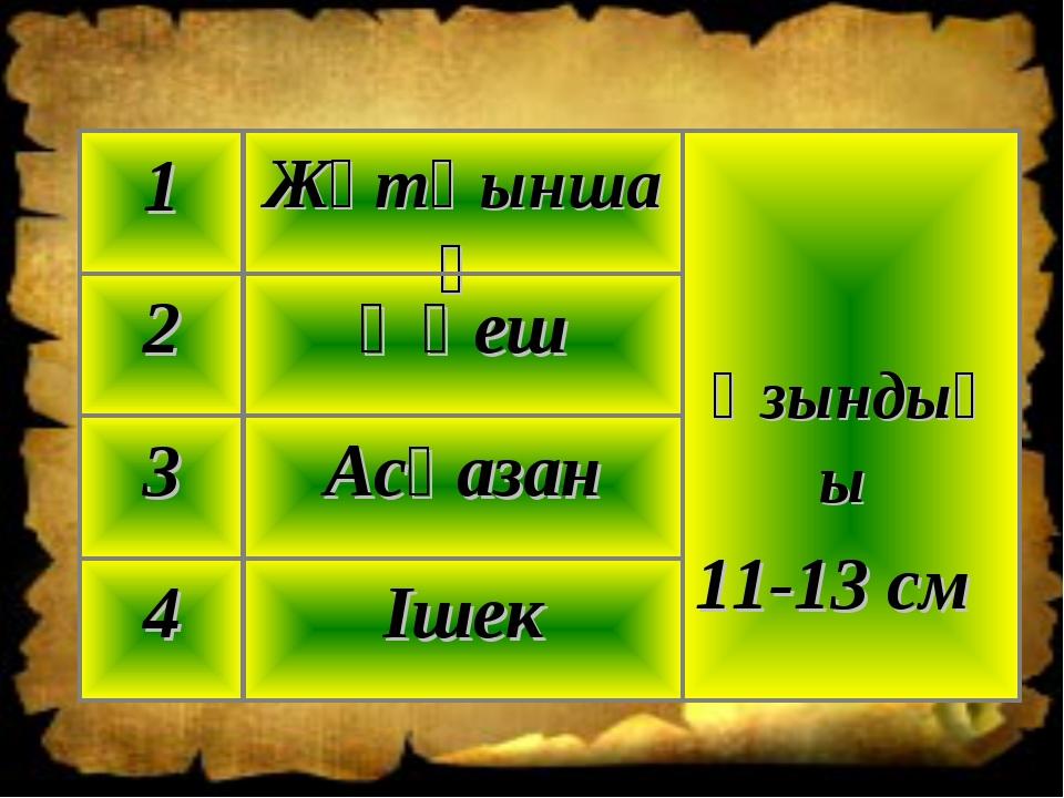 Ішек 4 Асқазан 3 Өңеш 2 Ұзындығы 11-13 см Жұтқыншақ 1