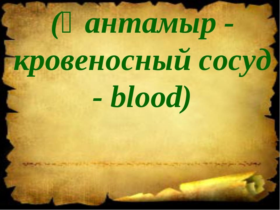 (Қантамыр - кровеносный сосуд - blood)