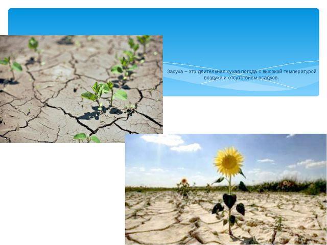 Засуха – это длительная сухая погода с высокой температурой воздуха и отсутс...