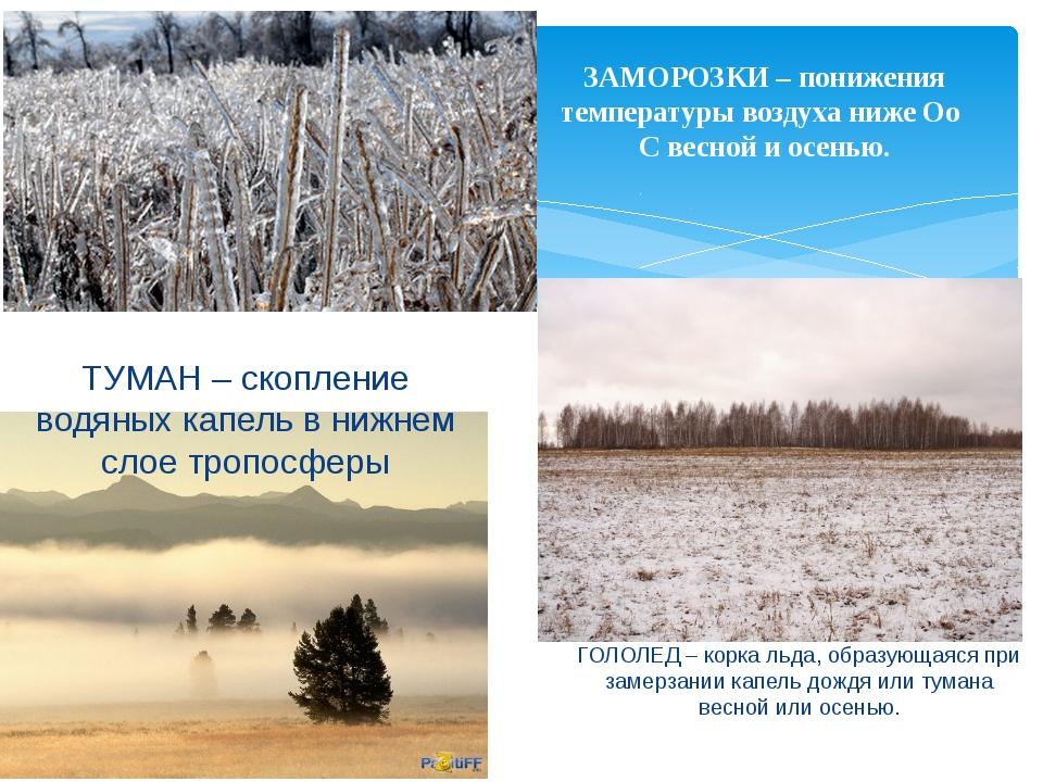 ЗАМОРОЗКИ – понижения температуры воздуха ниже Оо С весной и осенью. ТУМАН –...