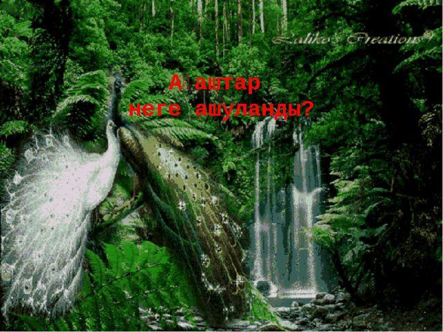 Ағаштар неге ашуланды?