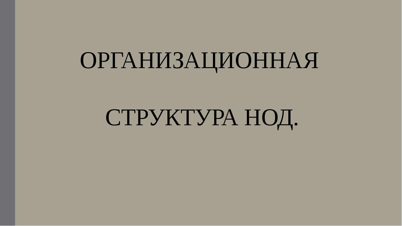 ОРГАНИЗАЦИОННАЯ СТРУКТУРА НОД.