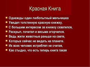 Красная Книга Однажды один любопытный мальчишка Увидел толстенную красную кни