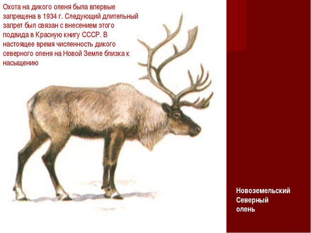 Охота на дикого оленя была впервые запрещена в 1934 г. Следующий длительный з...
