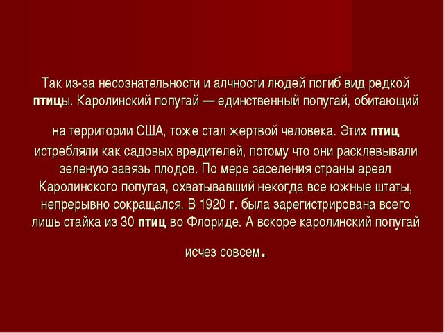 Так из-за несознательности и алчности людей погиб вид редкой птицы. Каролинск...