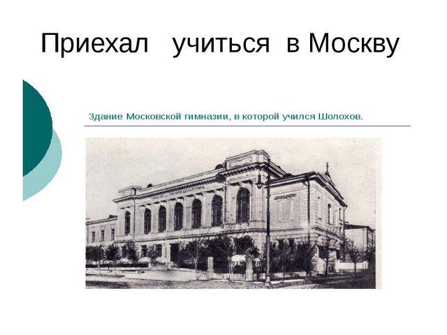 Приехал учиться в Москву