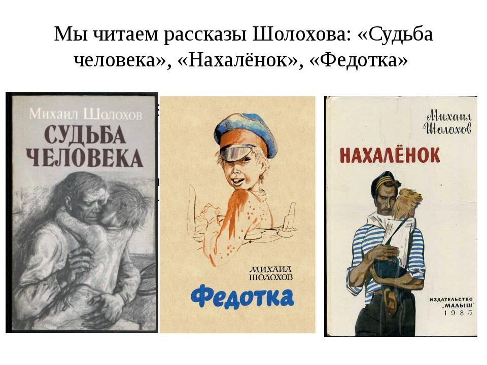 Мы читаем рассказы Шолохова: «Судьба человека», «Нахалёнок», «Федотка»