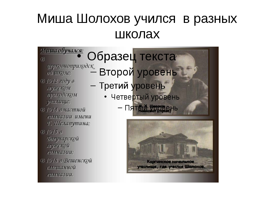 Миша Шолохов учился в разных школах