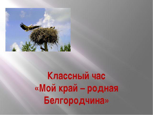 Классный час «Мой край – родная Белгородчина»