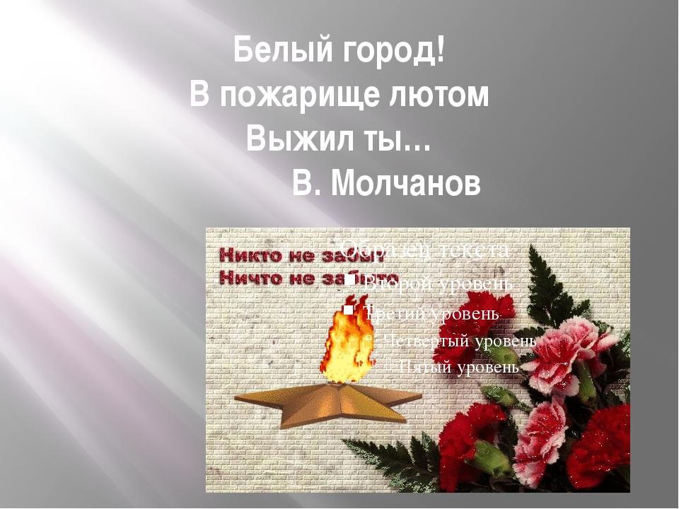 Белый город! В пожарище лютом Выжил ты… В. Молчанов