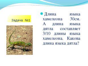 Задача №1 Длина языка хамелеона 30см. А длина языка дятла составляет 3/10 дл
