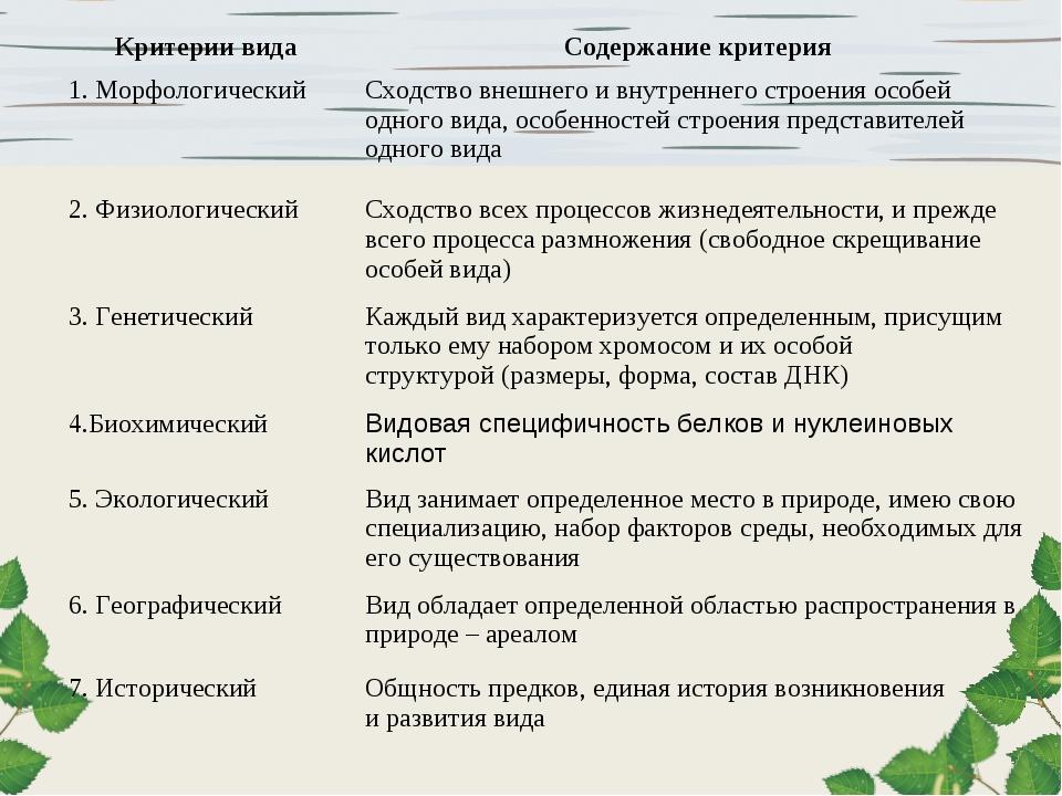 Критерии видаСодержание критерия 1. МорфологическийСходство внешнего и внут...