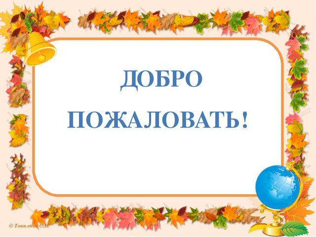 ДОБРО ПОЖАЛОВАТЬ! © Топилина С.Н.