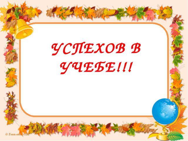УСПЕХОВ В УЧЕБЕ!!! © Топилина С.Н.