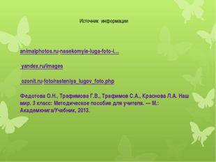 Источник информации animalphotos.ru›nasekomyie-luga-foto-i… yandex.ru/images