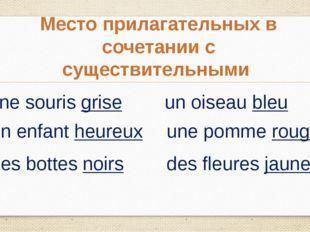 Место прилагательных в сочетании с существительными une souris grise un enfan