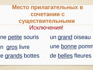 Место прилагательных в сочетании с существительными Исключения! une petite so
