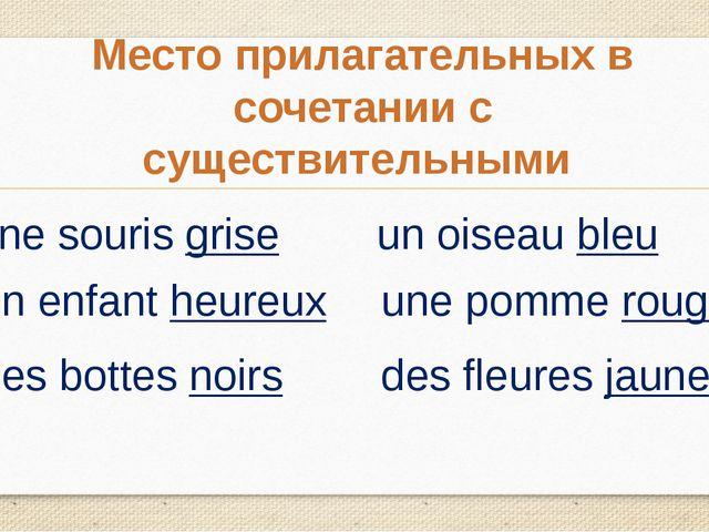 Место прилагательных в сочетании с существительными une souris grise un enfan...