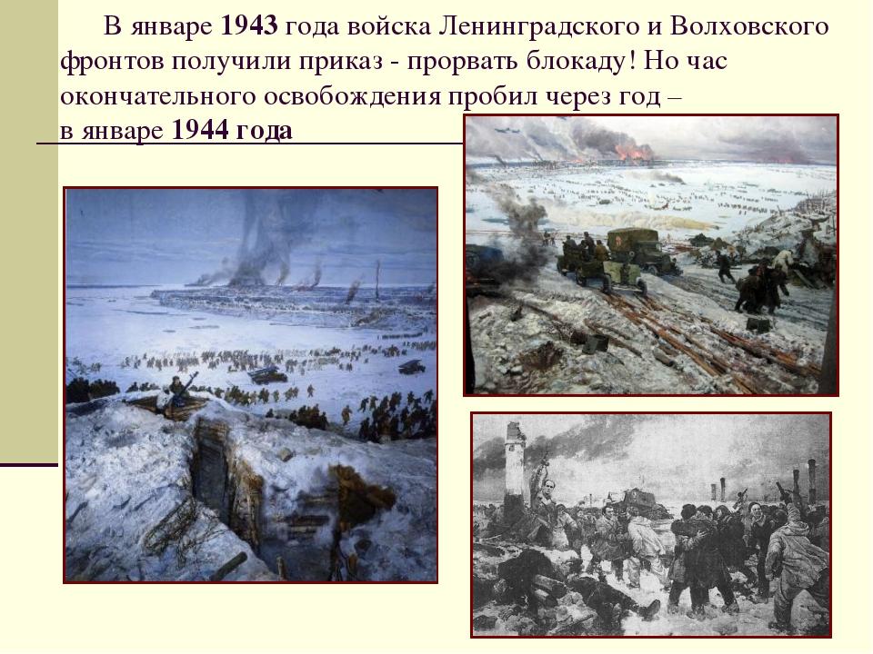В январе 1943 года войска Ленинградского и Волховского фронтов получили прик...