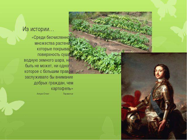 Из истории… «Среди бесчисленного множества растений, которые покрывают поверх...