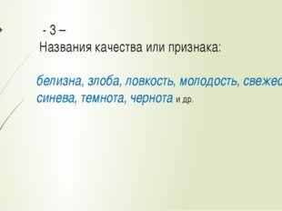 - 3 – Названия качества или признака: белизна, злоба, ловкость, молодость,