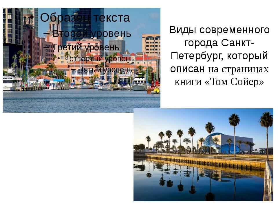 Виды современного города Санкт-Петербург, который описан на страницах книги «...