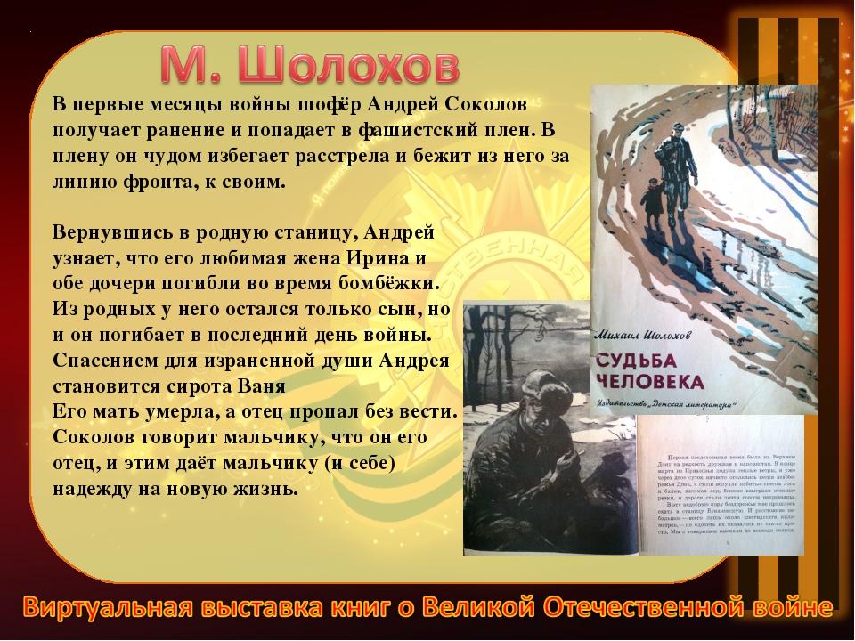 Вернувшись в родную станицу, Андрей узнает, что его любимая жена Ирина и обе...