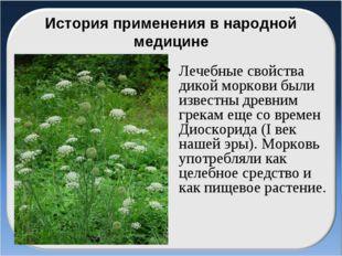 История применения в народной медицине Лечебные свойства дикой моркови были и