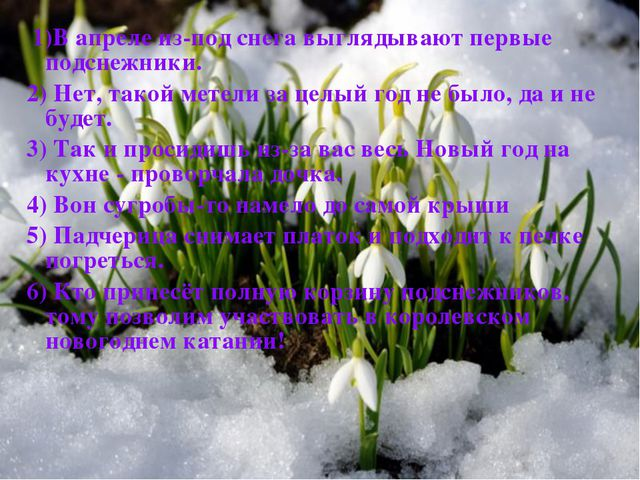 1)В апреле из-под снега выглядывают первые подснежники. 2) Нет, такой метели...