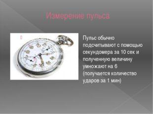 Измерение пульса Пульс обычно подсчитывают с помощью секундомера за 10 сек и