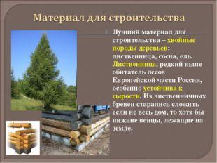 Лучший материал для строительства – хвойные породы деревьев: лиственница, сос