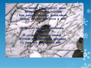 С наступлением холодов заливают катки. Дети и взрослые катаются на коньках