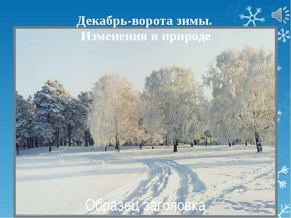 Народные приметы и поговорки Декабрь год кончает, зиму начинает. Декабрь и з...