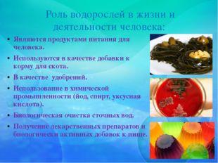 Роль водорослей в жизни и деятельности человека: Являются продуктами питания