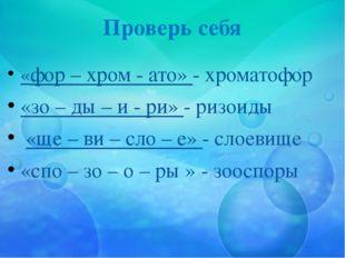 Проверь себя «фор – хром - ато» - хроматофор «зо – ды – и - ри» - ризоиды «ще