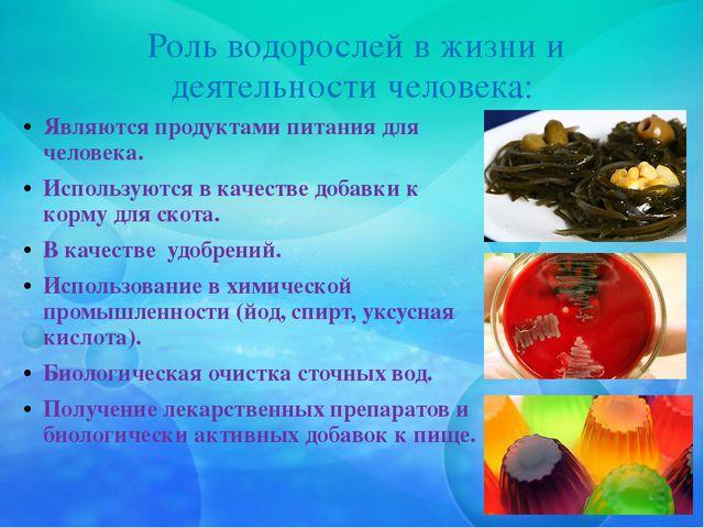 Роль водорослей в жизни и деятельности человека: Являются продуктами питания...